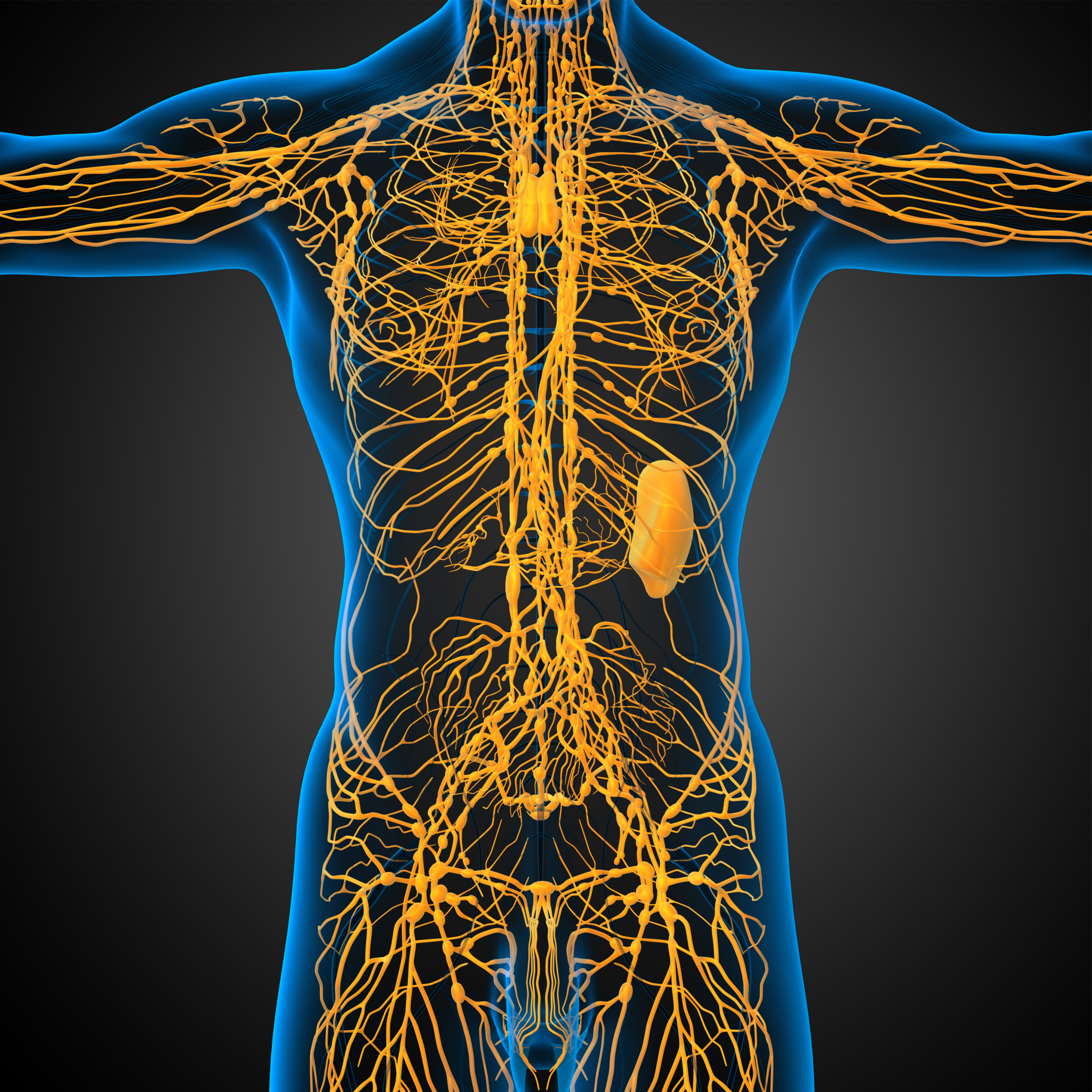 Lymphatic Drainage Massage at Therapy Station